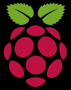 Raspberry Pi Logo (a Raspberry)